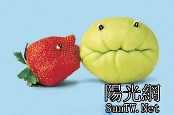 13各种水果diy的动物和人物造型