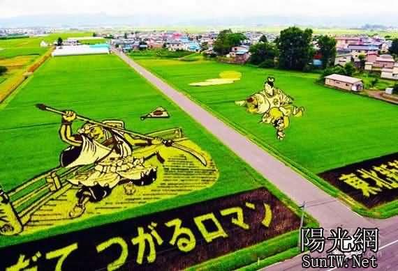 稻田里種出來的藝術畫作,令人歎為觀止--陽光網