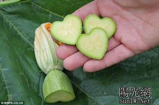 英國公司推新穎模具打造心形果蔬