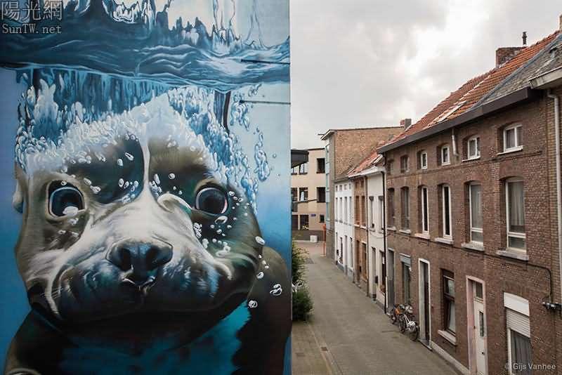 街頭藝術:比利時潛水狗的快樂生活--陽光網