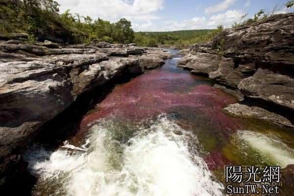 世界最美河流之彩虹河 被五顏六色的天然藻類覆蓋