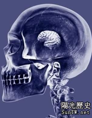 持續基因突變將會導致人類智力衰退
