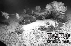 科學家首次在海洋地殼深處發現生命