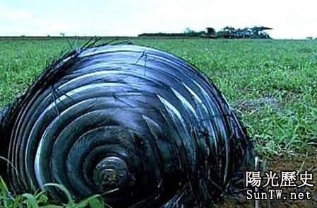 不明飛行物墜落巴西農場 外形似田螺