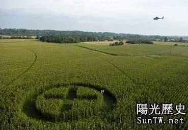 法國南部一個轉基因玉米田留下了綠色和平