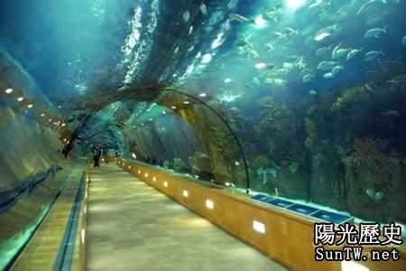 世界上最奇特最美麗的十大隧道排行榜