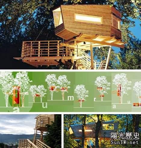 盤點全球最令人歎為觀止的神奇樹屋