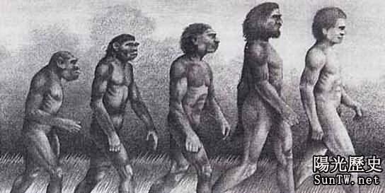 人類將在2050年進化成一個全新種群