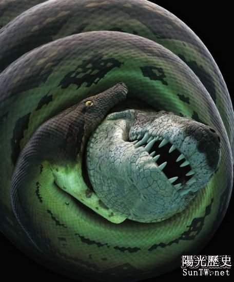 恐龍時代殘酷血腥史:巨蟒生吞霸王龍