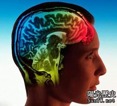 歷史性發明 科學家計劃將人腦上傳到電腦