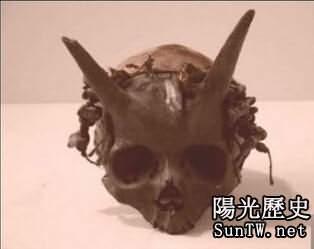 世界上的驚人頭骨照:頭上長角