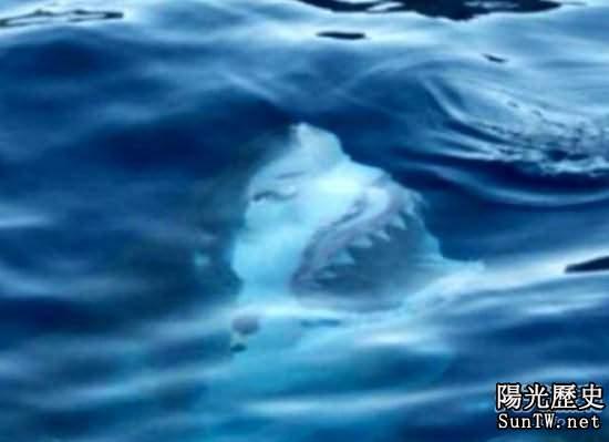 震撼海底畫面 深海恐懼症者慎入