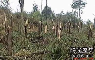 中國三大UFO謎案之一:94年空中怪車